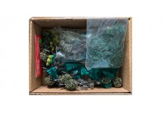 Box of assorted trees DB14566